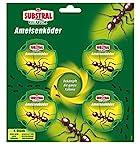 Substral Celaflor Ameisen-Köder, zur Bekämpfung von Ameisen im Haus und auf Terrassen mit schneller Nestwirkung, 4 Stck