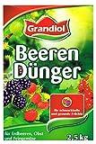 Grandiol® Organischer mineralischer Beerendünger 2,5 Kg mit Magnesium