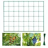 Halcyerdu Pflanzennetz, Premium Ranknetz, für Gurken, Tomaten und Rankhilfen für Kletterpflanzen. Premium Gartennetz Größe: 1.8m x 2.7m, Maschnweite (10cm) grün