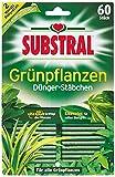Substral Dünger-Stäbchen für Grünpflanzen mit Eisen-Plus und 2 Monate Langzeitwirkung, 60 Stück