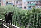 Bird-Tech Balkonnetz für Katzen und Vögel, Farbe: Stein, inkl. 50Befestigungsklammern + 1x 80-ml-Tube Silikon
