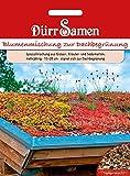 Blumenmischung zur Dachbegrünung | Blumensamen von Dürr-Samen
