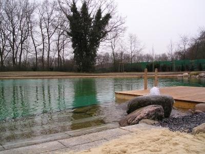Ein schwimmteich im garten land wasser for Fische im schwimmteich