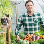 Welches Gemüse lässt sich im Gewächshaus anbauen?