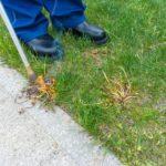 Gärtner verbrennt Unkraut am Rasen mit einem Unkrautbrenner
