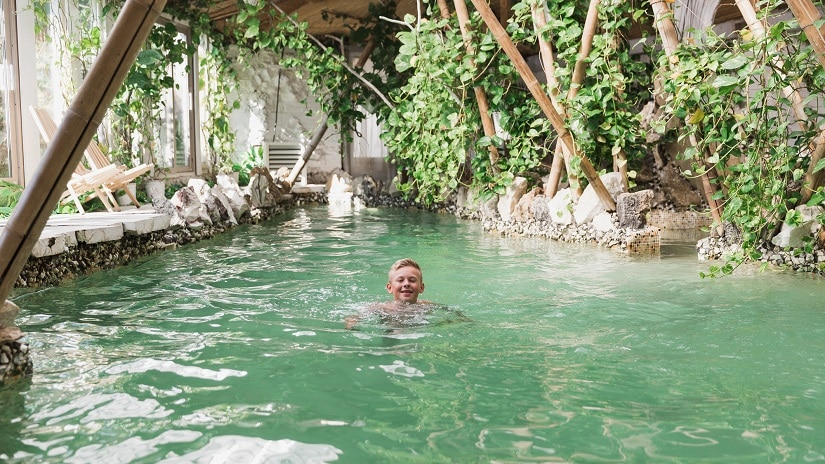 Ein Schwimmteich im Garten