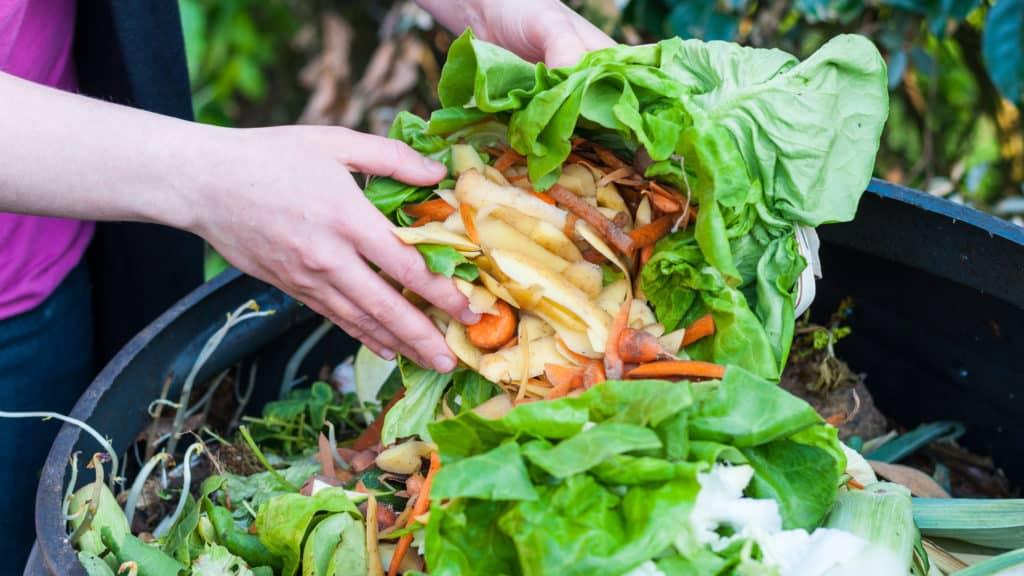 Kompostbeschleuniger