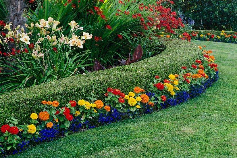 Stilvoll angelegter Garten mit einer Buchsbaumhecke in der perfekt passenden Höhe