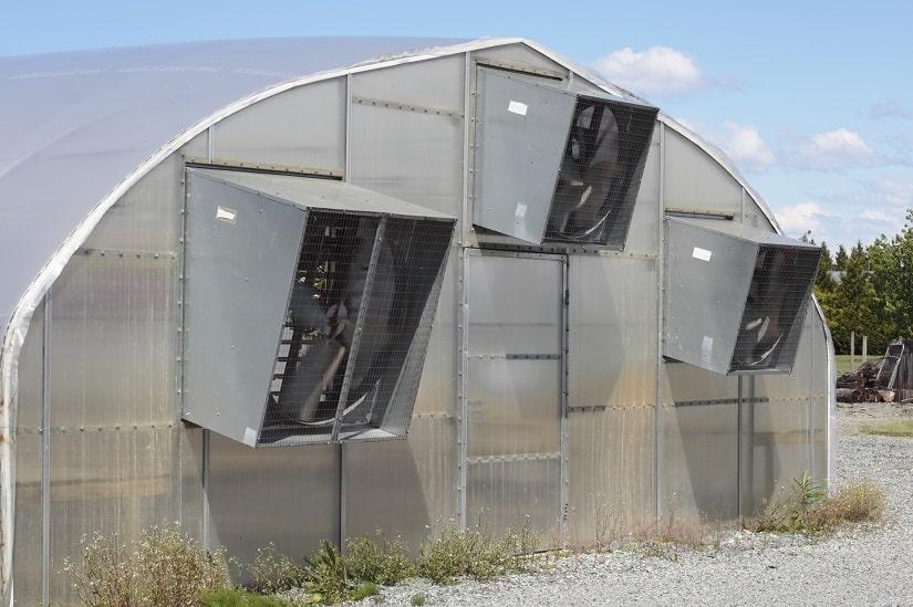 Gewächshaus mit Kühlung