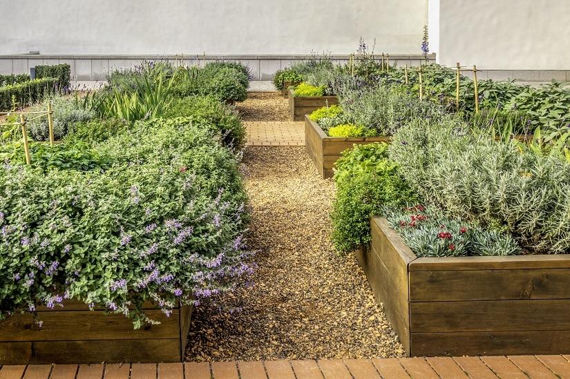 Garten mit Kräuterbeeten aus Holz