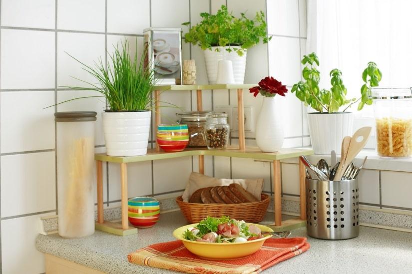 Kräuterregal in der Küche