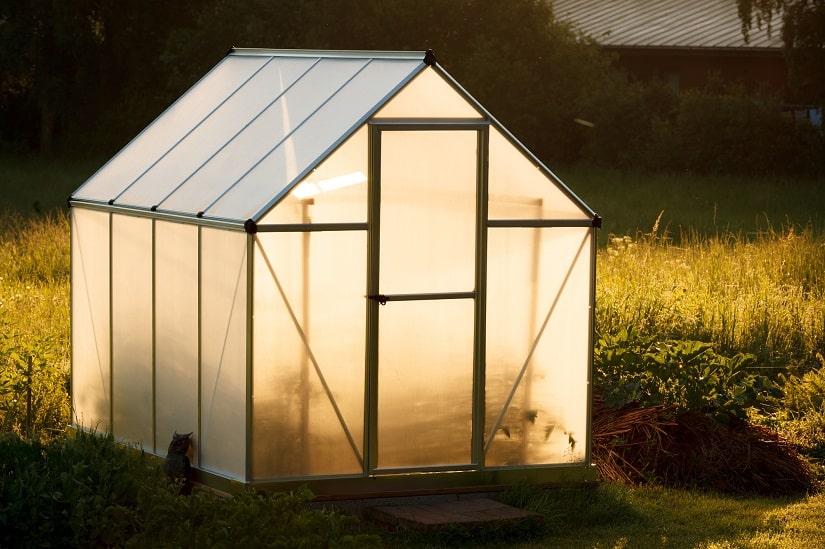 Kleines Gewächshaus im Hinterhof eines Hauses