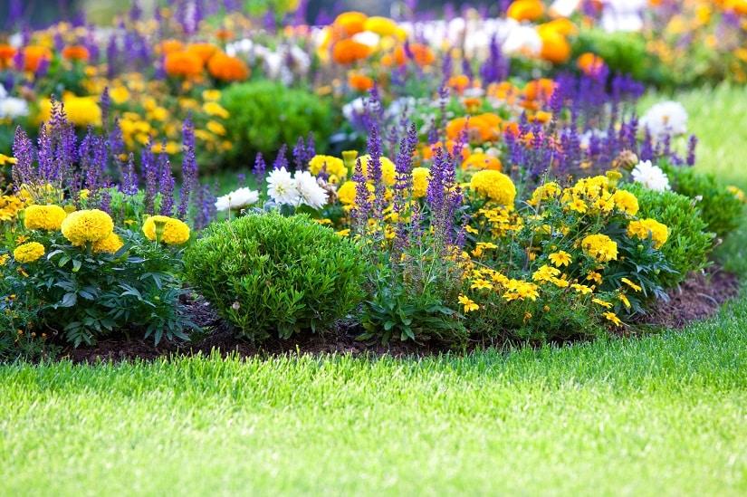 Flexibler Gartenschlauch für einen top gepflegten Garten