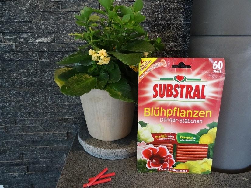 Düngerstäbchen für Blühpflanzen