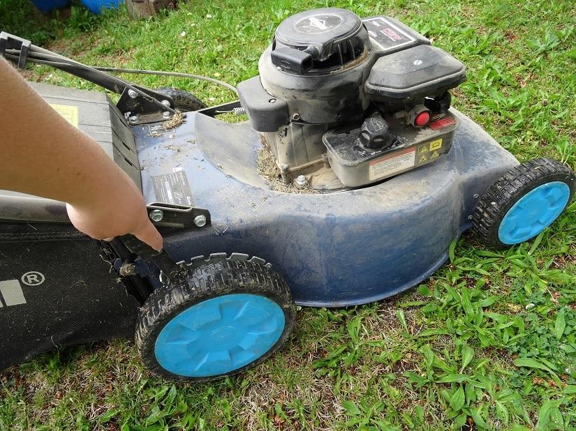 Die Schnitthöhe lässt sich bei den meisten Rasenmähern einfach einstellen