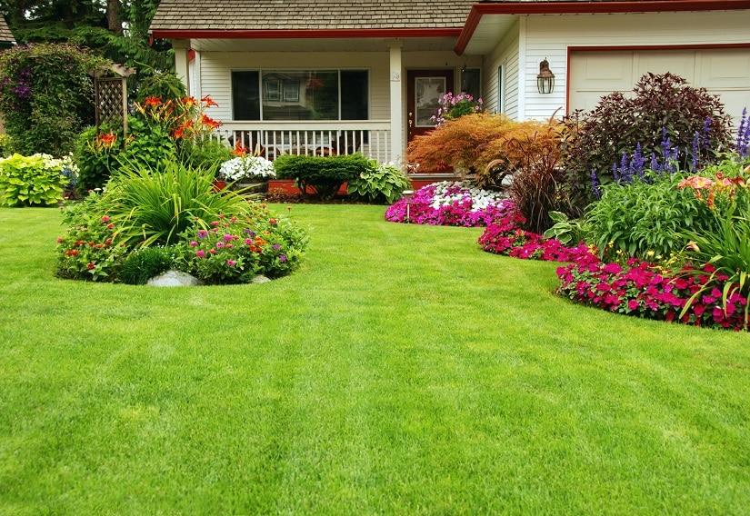 Der Rasenlüfter hilft bei der Pflege des Rasens!