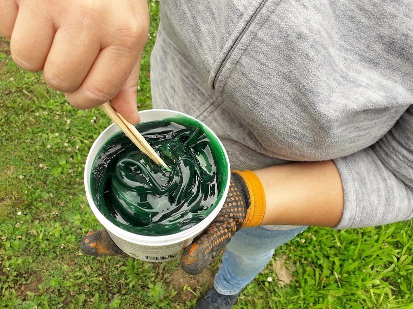Der grüne Raupenleim besteht aus natürlichen Rohstoffen und ist umweltschonend
