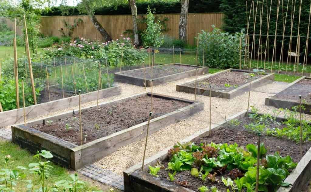 mit Rollkultivator gepflegtem Garten