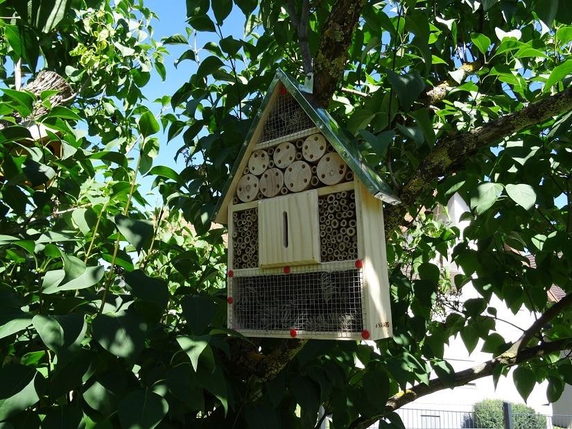 Mein Insektenhäuschen hängt nun mindestens 50cm hoch in der Sonne, wo die Insekten ihre Ruhe haben und meine Kinder sie dennoch beobachten können