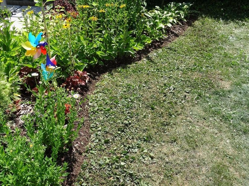 Eine saubere englische Rasenkante ist ein ästhetischer Hingucker und zeugt von einem gepflegten Garten