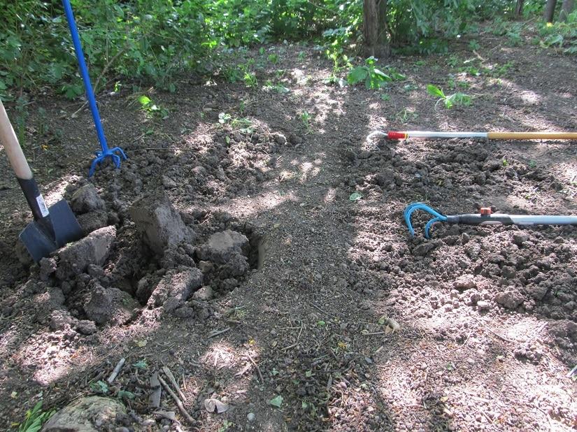 Wir haben 4 Varianten zum Auflockern des Bodens getestet