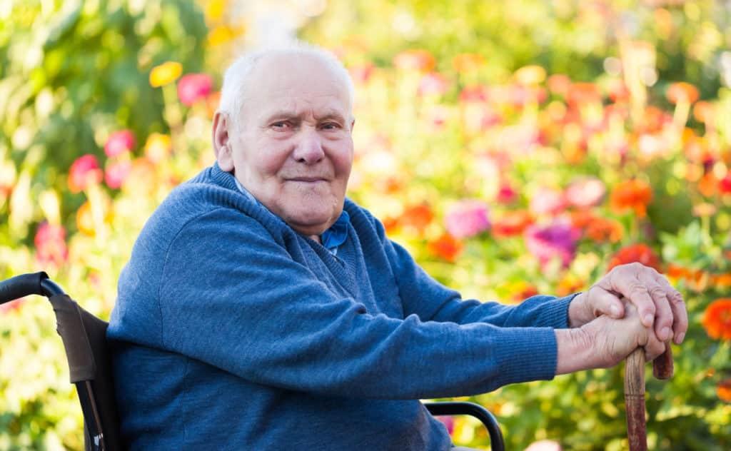 Traumgarten trotz Rollstuhl - so kann der Garten barrierefrei gestaltet werden