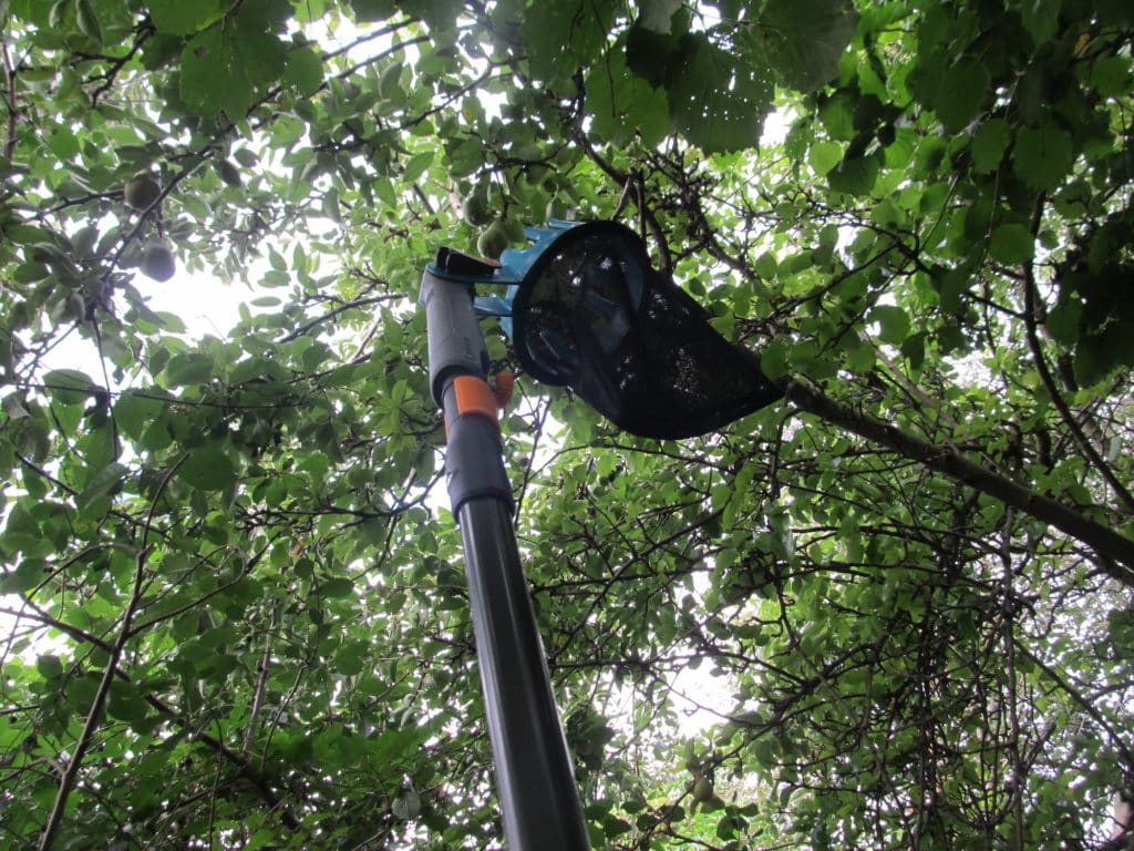 Fiskars Universaladapter mit Gardena combisystem Obstpflücker