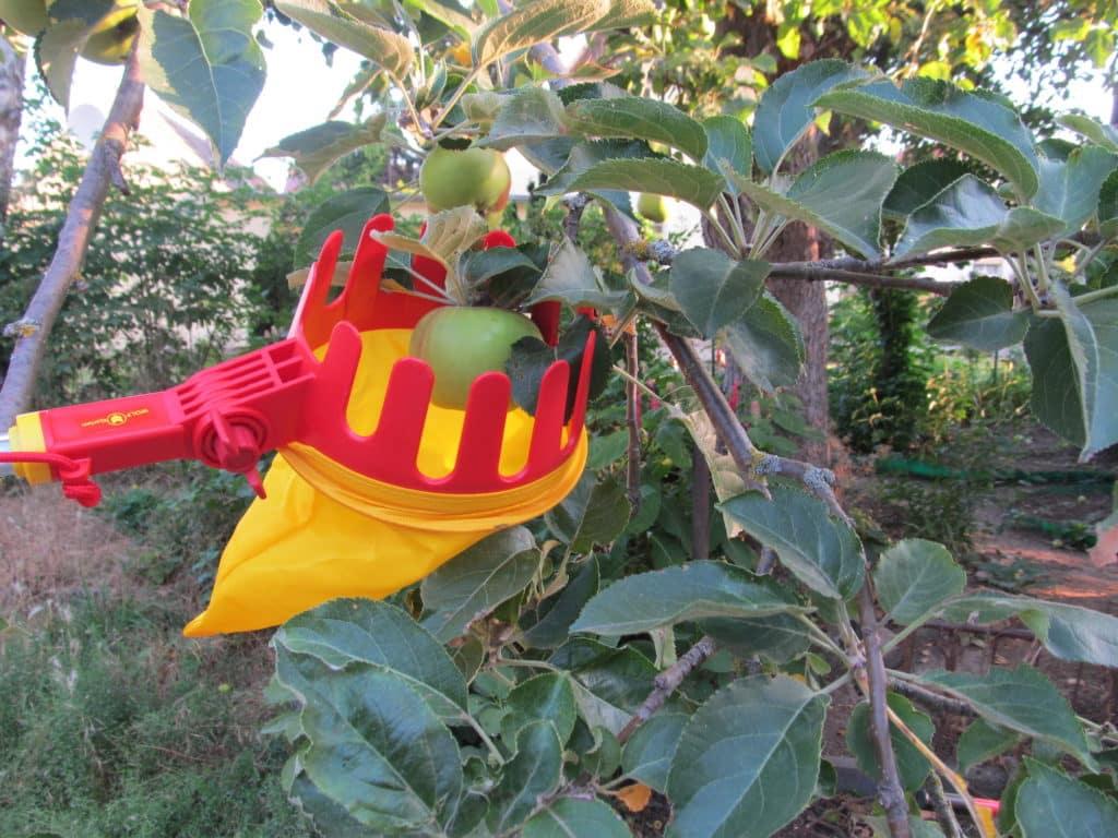 Wolf-Garten Obstpflücker