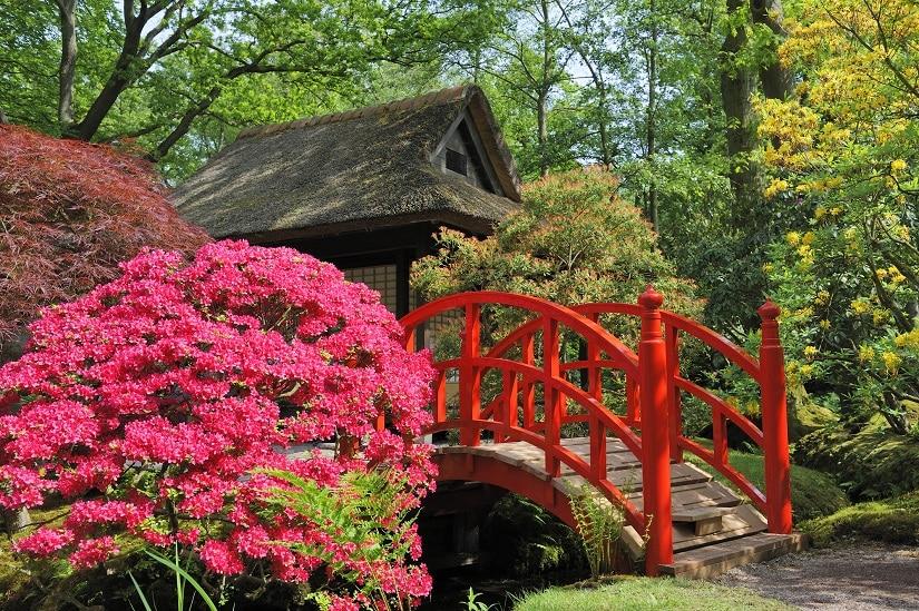 Teichbrücke japanischer Art