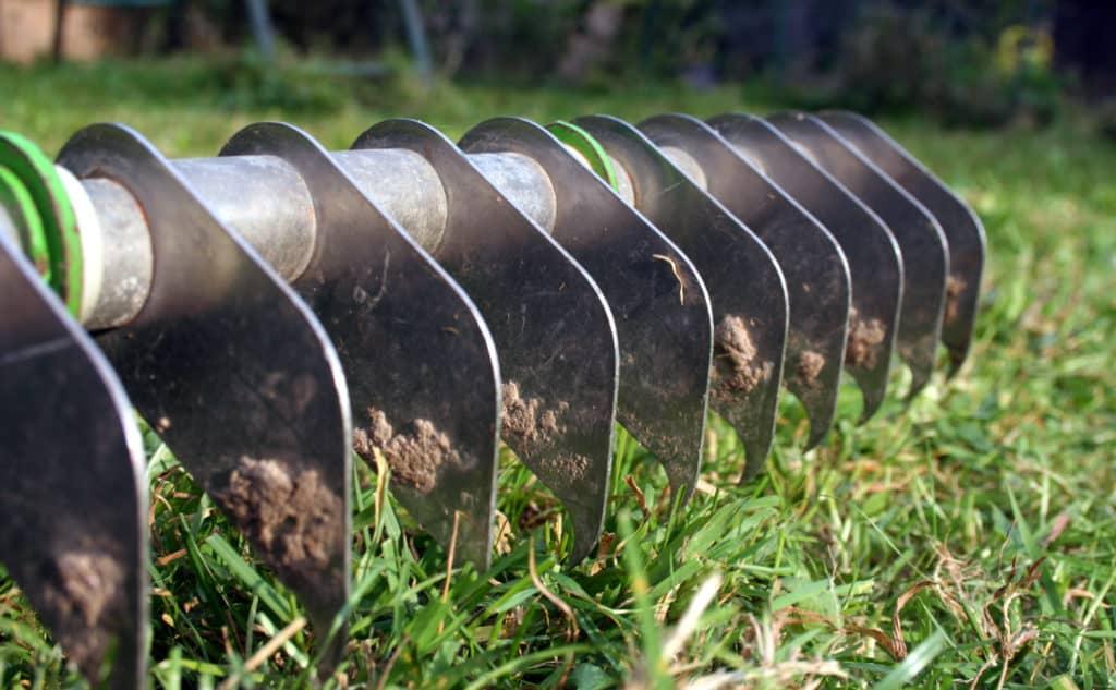 Den Rasen Vertikutieren oder Lüften?