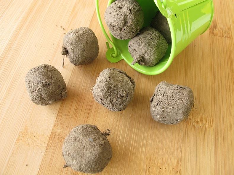 Saatbomben müssen nicht gekauft werden. Sie können auf zwei verschiedene Arten selbst hergestellt werden.