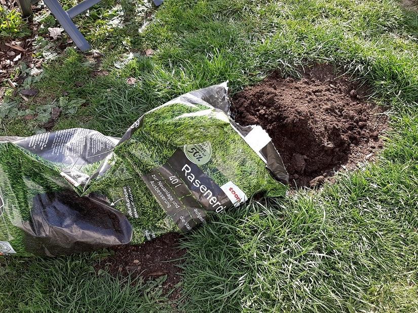 geschädigter und lückenhafter Boden lässt sich mit Rasenerde aufarbeiten