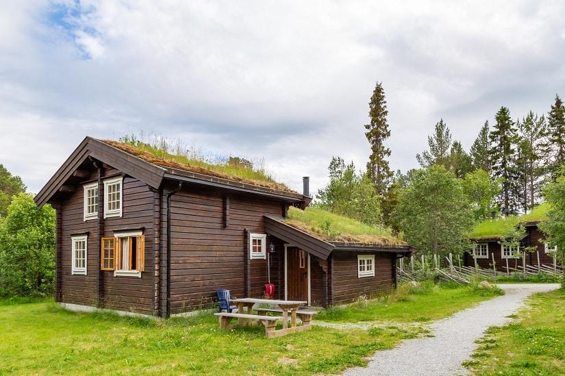 Auch Satteldächer kann man begrünen!