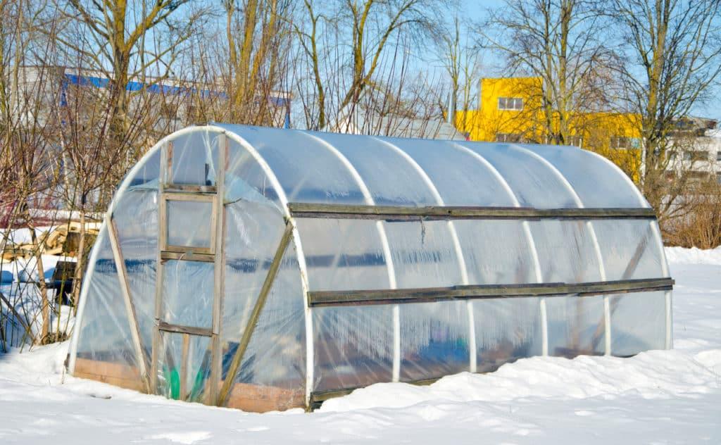 Gewächshaus im Winter nutzen